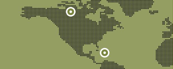 rlc regular units map
